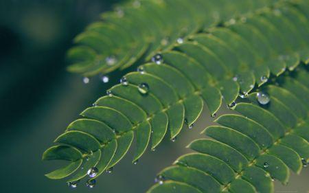 hadis hadis 92 Allahın rahmetinin nitelik ve niceliği...